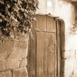 Old gate — Stock Photo #6074949