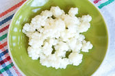 Tibean milk mushroom /kefir/ — Stock Photo