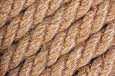 ロープのテクスチャ — ストック写真