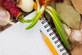 Notebook to write recipes with spices — Stock Photo