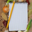 Notebook to write recipes with spices — Stock Photo #6103713