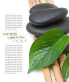 Spa relaxation treatments — Stock Photo