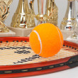 Winning tennis tournaments - Stockfoto