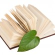 Launched book with a green leaf — Stock Photo