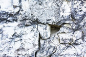 Limestone — Stock Photo