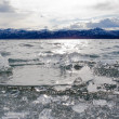 Stock Photo: Ice-Break at Lake Laberge, Yukon Territory, Canada