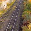 Foto Stock: Railway Embankment in Fall