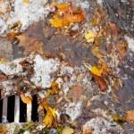 詰まった下水道ブロック雨水流出の特性 — ストック写真