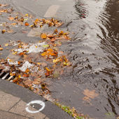 Clogged sewer blocks rainwater runoff — Stock Photo