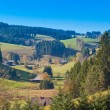 Foto Stock: Black Forest Landscape