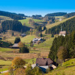 Black Forest Landscape — Stock fotografie #6169844