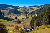 Black Forest Landscape — Stock Photo
