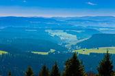 Schwarzwald-landschaft — Stockfoto