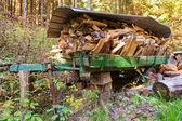 Load of Firewood — Stock Photo