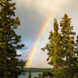 Stock Photo: Rainbow over lake in boreal forest in YT, Canada