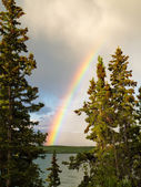 Rainbow over lake in boreal forest in YT, Canada — Stock Photo