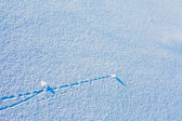 Trajectory lines on snow surface — Stock Photo