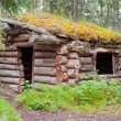 Old traditional log cabin rotting in Yukon taiga — Stock Photo