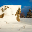 Snow Wilderness Scene - Stock Photo