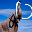Stock Photo: Woolly Mammoth