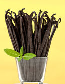 Fresh vanilla bunch — Stock Photo