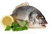 Dorado Fish garnished with Parsleyl and lemons ready for the pan or the grill — Stock Photo