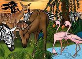 African Animals — Stock Photo