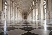 Italy - Royal Palace: Galleria di Diana, Venaria — Stok fotoğraf