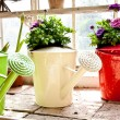 Stock Photo: Garden - Watering can