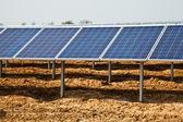 Solar panel plant — Foto de Stock