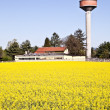 Country and water tower — Stock Photo