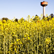 Country and water tower - Stock Photo