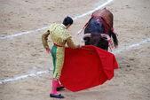 Toreador in the arena — Stock Photo
