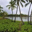 Anaehoomalu bay — Stock Photo