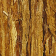 Touchwood background — Stock Photo #6271127