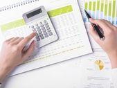 Analyzing Business Data — Stock Photo