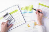 Analyzing Business Data — Stock Photo