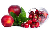Red fruits set — Stock Photo