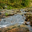 River stream in Portugal — Stock Photo #5914683