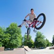 Royalty-Free Stock Photo: BMX Bike Stunt tail whip