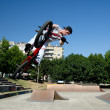 BMX Bike Stunt Table Top - Photo