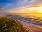 Laguna Beach — Stock Photo