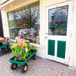 Flower Shop — Stock Photo #5554115