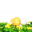 Stock Photo: Yellow Easter motive