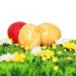 Yellow and red Easter eggs — Stockfoto