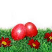 Huevos de pascua pintaron hermosos — Foto de Stock