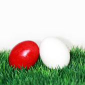 Red and white egg — Stock Photo