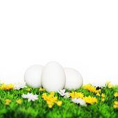 3 белые яйца — Стоковое фото