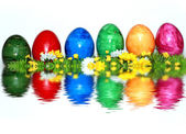 Colorful mix of eggs — Stock Photo