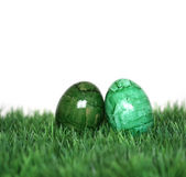 Well-camouflaged eggs — Stock Photo